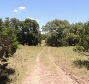 BUCK MEADOW TRAIL, Spring Branch, Comal County, TX